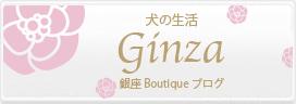 銀座boutiqueから毎日更新