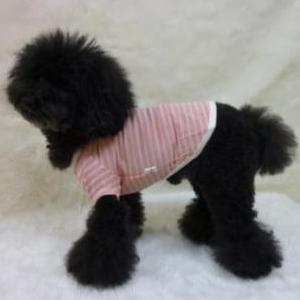 13ssbo-da-pop-pink-yoko.jpg