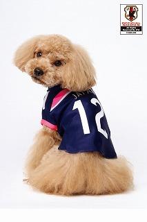 jfa14-15nadesikot-dog-usiro.jpg