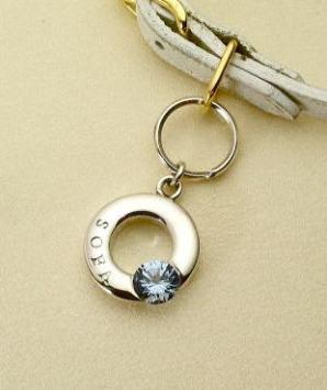 mini-ring.jpg