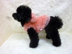 poodlefar-pop-pink-yoko.jpg