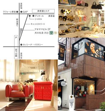 shibuya_map.jpg