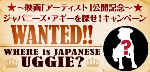 uggie_banner.jpg